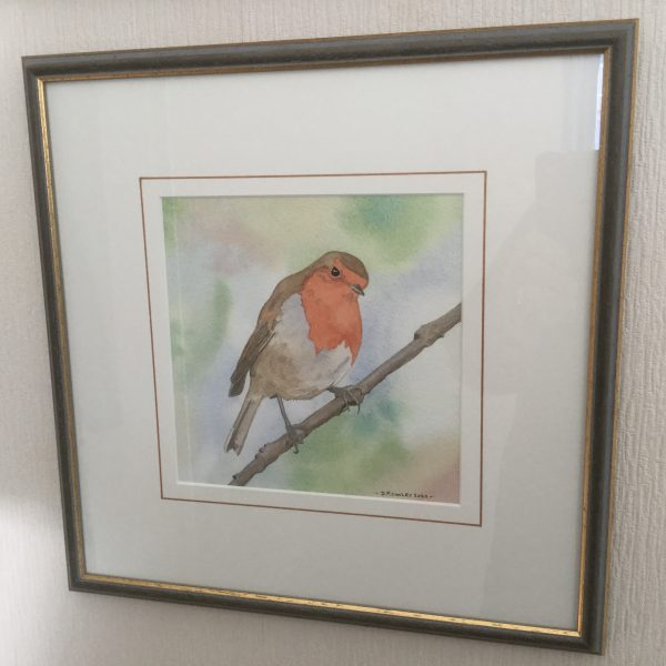 Robin, Original Watercolour