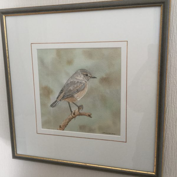 Stonechat, Original Watercolour