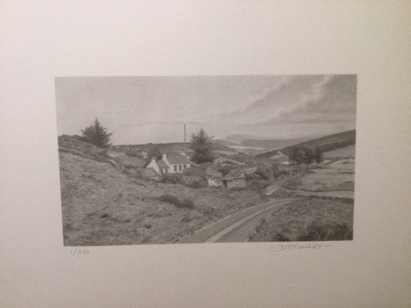 calf of man bird observatory limited edition print
