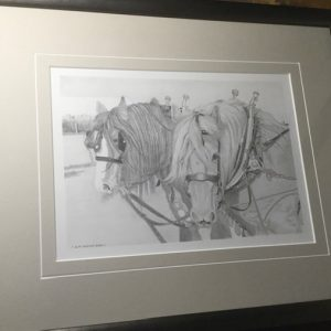 An original pencil study of two ploughing horses